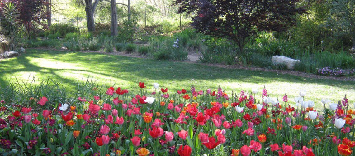 LA_Johnny_Southern_California_Heirloom-gardens-descanso-gardens1